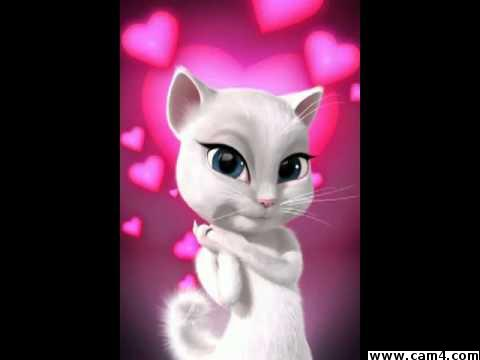 Room kittty?s=av3o9ayxm5xey4mdgr80e6oyy4d+pvdniwuzrvrk4yu=