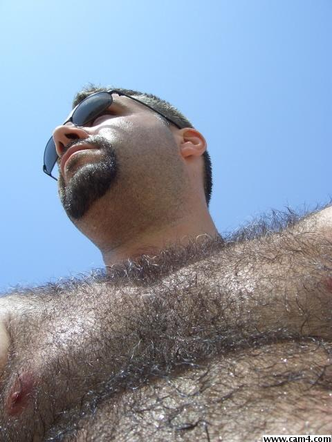 Cedric bear?s=tk8g0lc+icpowawydctljjk0cj2dy+vxrppxnbkkdtk=