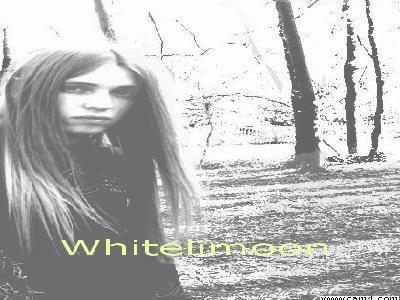 Whitelimoon photo 11431565